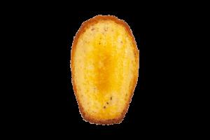 マドレーヌ(チーズ)
